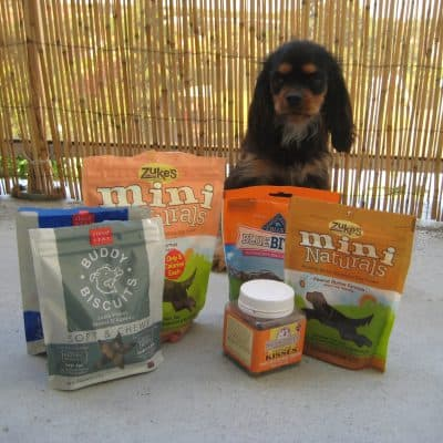 Dagny's picks for the best dog treats