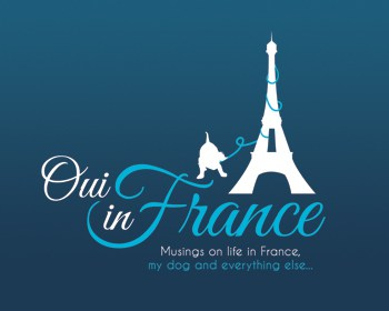oui-in-france-logo