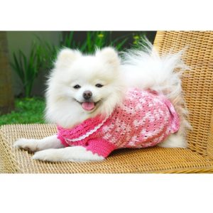 Etsy-dog-clothes