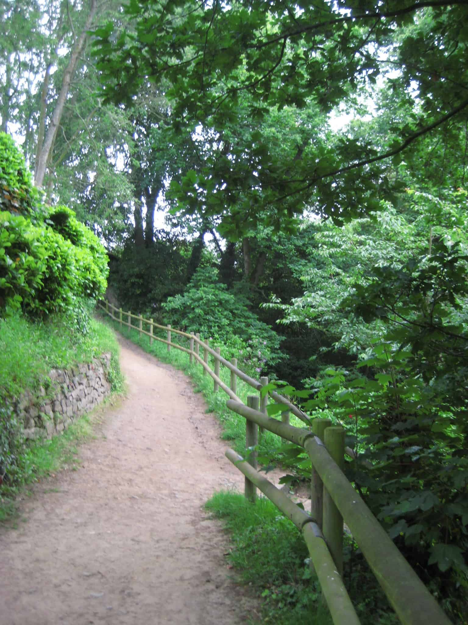 green path into the - photo #9