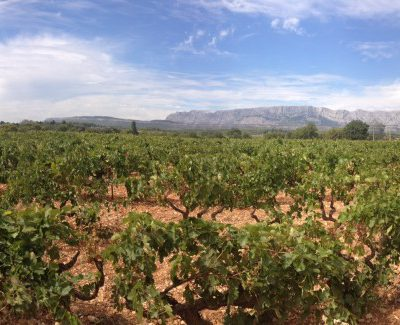 South of France vacation pic of the day: Mas de Cadenet Vineyard