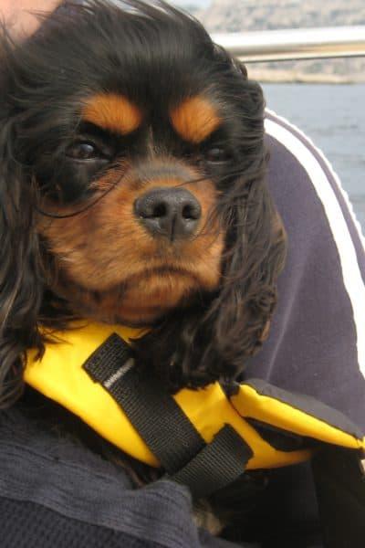 Dagny on Marseille boat trip