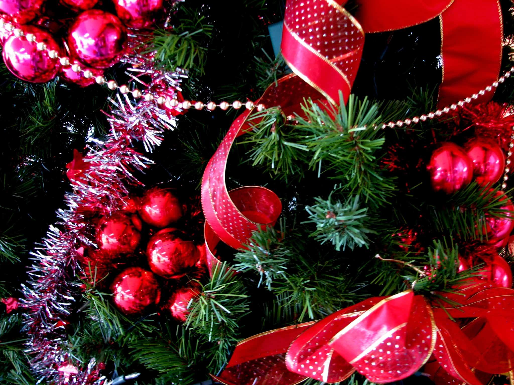 Christmas Tree France