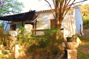 Housesitting Our Spanish off-the-grid home
