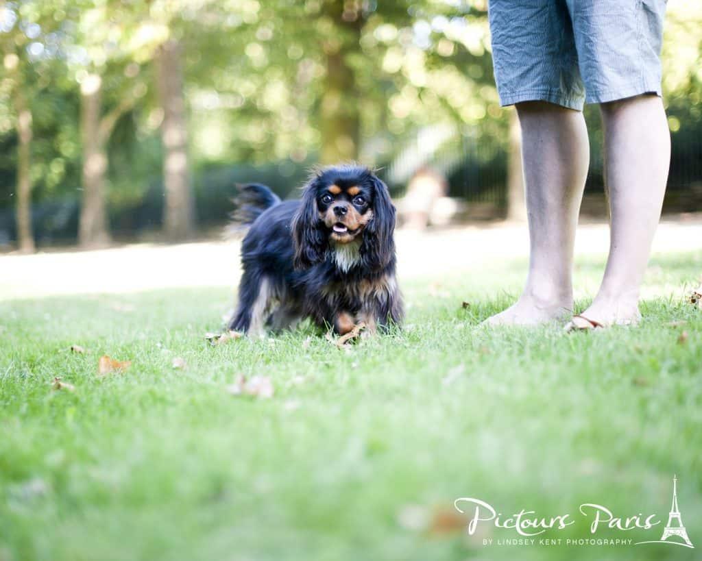Dagny at the park