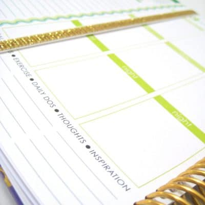 Get your life together with the Erin Condren Gold Edition Life Planner