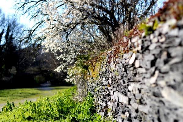 ardoiseres-slate-wall