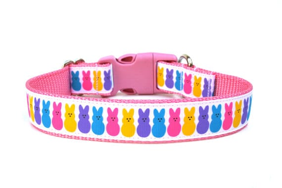 easter-dog-collar