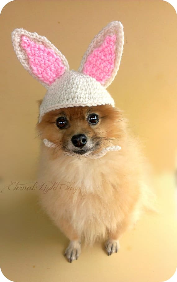 pet-bunnie-beanie-easter