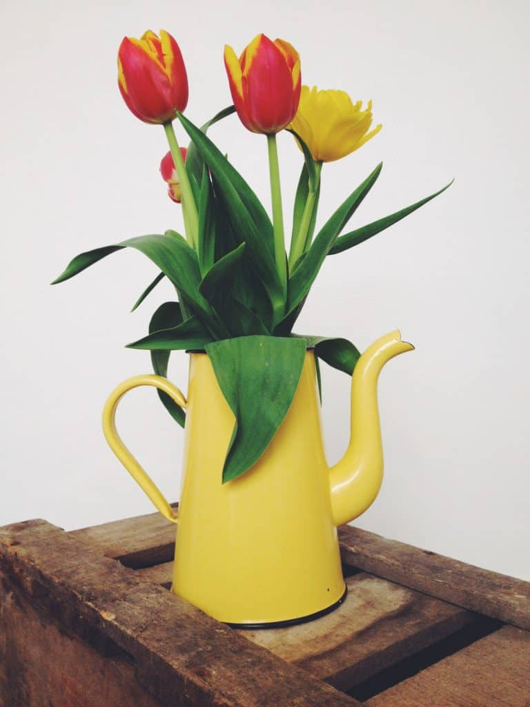 yellow cafetiere vase