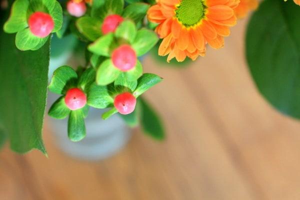 fresh-spring-flowers-france