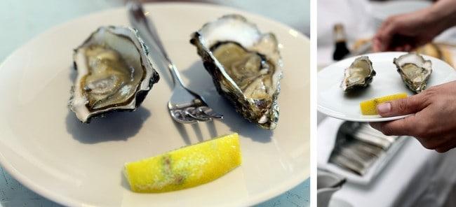 river-royale-oyster-tasting