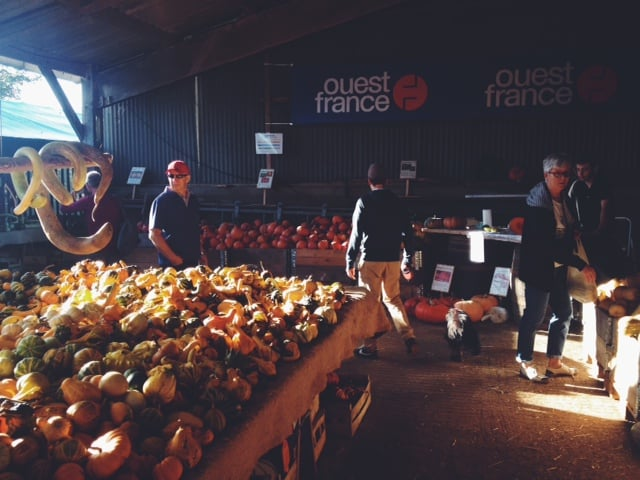 buying-pumpkins-in-france