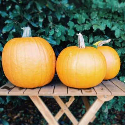 Finding a pumpkin in France (and carving success!)