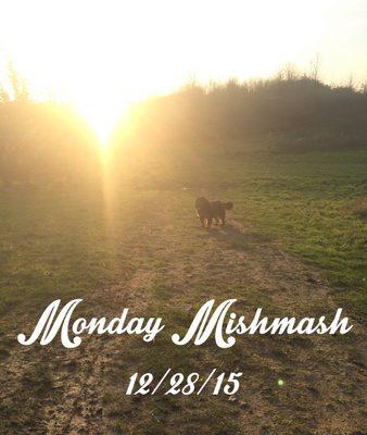 Monday Mishmash 12/28/15