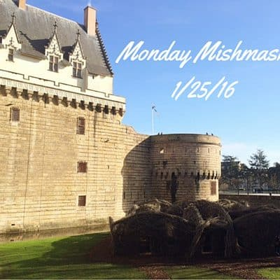 "Monday Mishmash 1/25/16: A ""spring"" day in Nantes and a blizzard video"