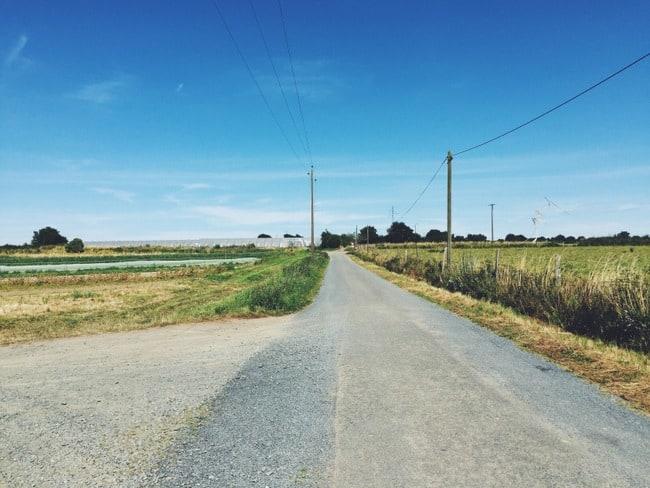 empty french farm road summer