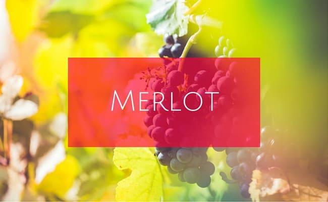 merlot pronunciation