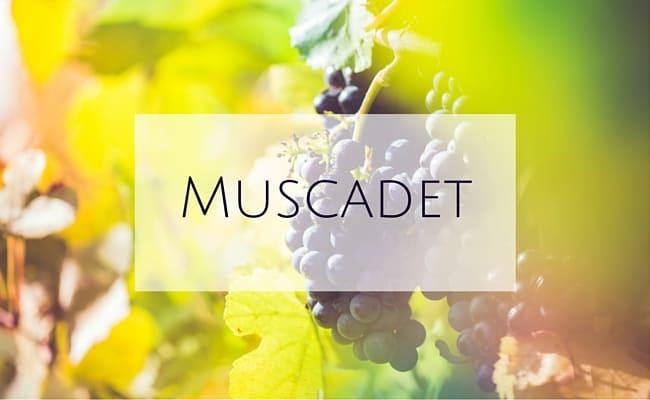 muscadet pronunciation