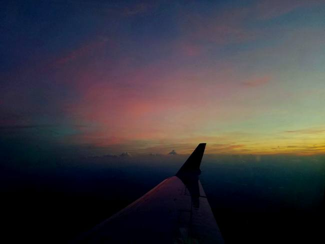 flight attendant interview view from wing