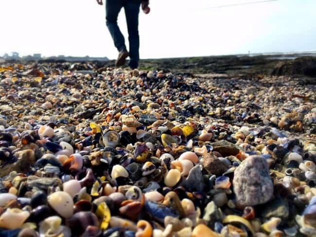 france shell beach loire atlantic coast