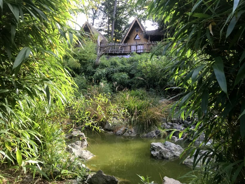 zoo de la fleche lemur habitat