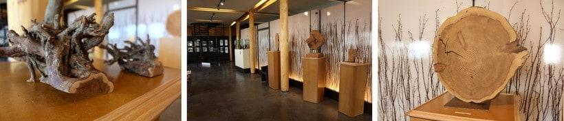 carnuta wood museum