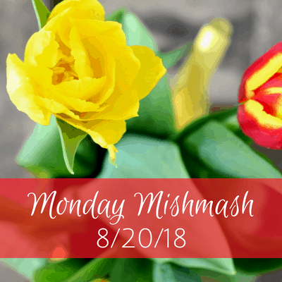 Monday Mishmash 8/20/18: My YouTube channel & more