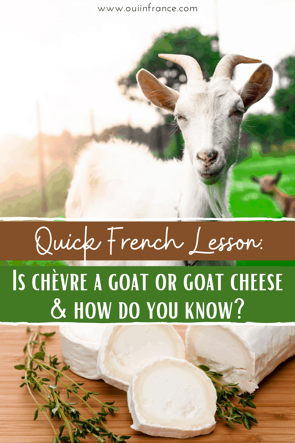 is chevre goat cheese