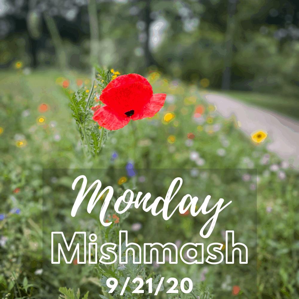 monday mishmash 92120