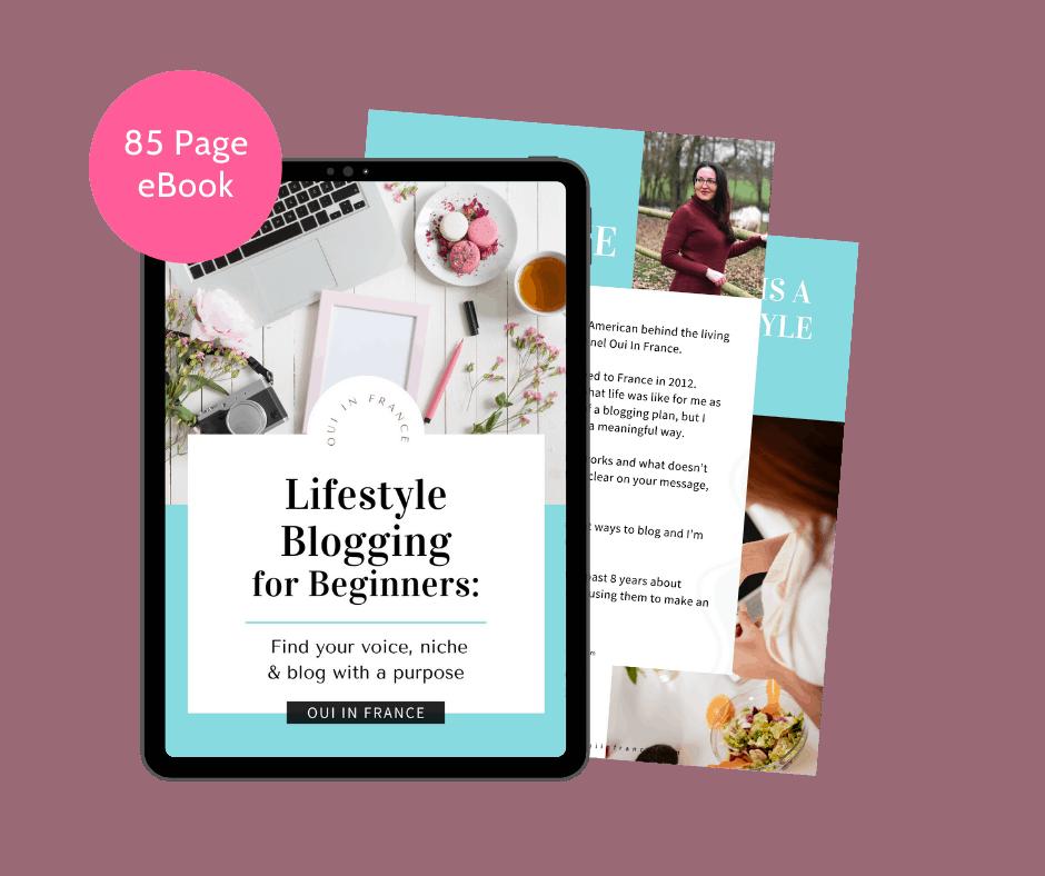 mockups ebook lifestyle blogging beginners